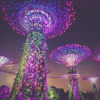 新航双11!实测更新!全国多地-新加坡/巴厘岛/澳大利亚/马尔代夫