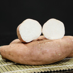 京觅 河南鹤壁白蜜薯 红薯地瓜 2.5Kg 单果重约150g-400g 新鲜蔬菜