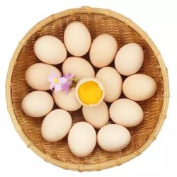 鹏昌 初产鲜鸡蛋 30枚 礼盒装 *6件