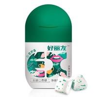 Orion 好丽友 EX 休闲 无糖 口香糖 绿茶薄荷味 40g/瓶