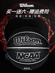 Wilson 威尔胜 室内外篮球