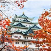 郑州直飞日本大阪6天往返含税机票
