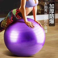 采纯妮 加厚防爆专业瑜伽球