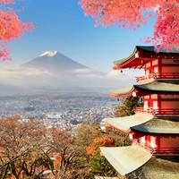 红叶季!杭州直飞日本静冈4-5天往返含税机票