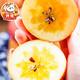 馋绵 新疆阿克苏冰糖心苹果 净重5kg 果径: 80-85mm 29.9元包邮(需用券)