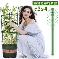 花架爬藤架花支架花卉铁线莲 高45cm