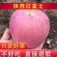 陕西红富士礼泉丑苹果10斤18.8元