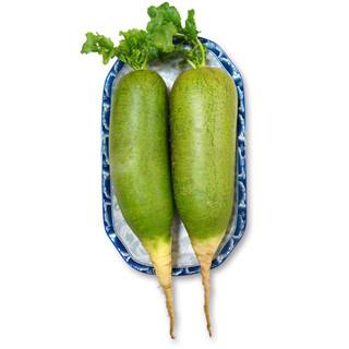 天津沙窝萝卜2.5kg 礼盒装 水果萝卜 新鲜青萝卜 礼盒装 新鲜蔬菜 *6件