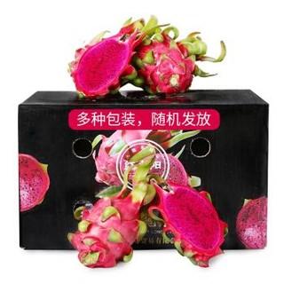 京觅 越南红心火龙果 大果 总重6kg以上(9-12个)单果约430-600g   *2件