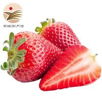 静益乐源 红颜草莓 1500g