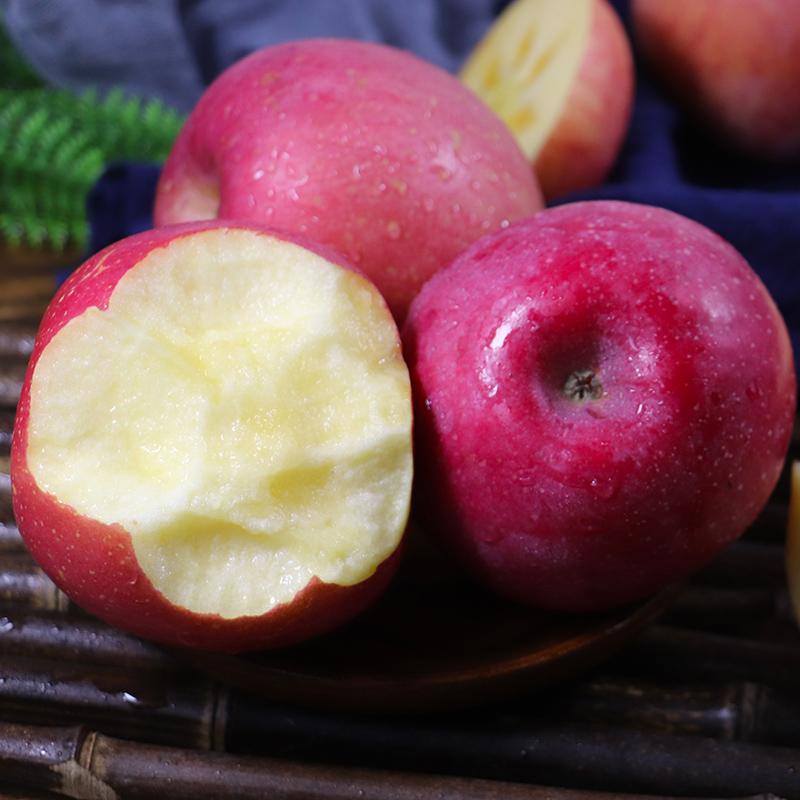 日尝 陕西红富士苹果 冰糖心 4500g 果径70-75mm