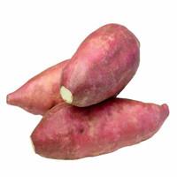 静益乐源 商薯白心板栗红薯 5斤装