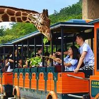 当地玩乐、亲子游:200+种10000多只世界珍稀动物!杭州野生动物世界门票 大小通用