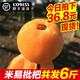 顺丰发6斤 四川攀枝花米易枇杷果新鲜水果包邮早钟大五星琵琶带箱 36.8元