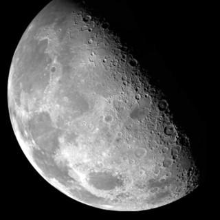 星特朗(CELESTRON)天秤805天文望远镜镜