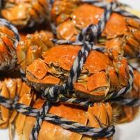 3两大闸蟹现蒸派送!蒸汽海鲜+惠灵顿牛排畅吃!上海瑞金洲际酒店 双人自助午餐