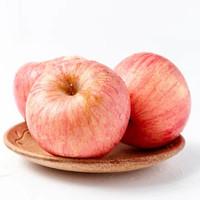 港利生鲜 烟台红富士苹果脆甜多汁5斤装 果径75-80mm