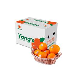 杨氏 YANG'S精品赣南脐橙 精选3斤装*4件+ 京觅 精品甜脆柿子 2kg装