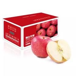 京觅 烟台红富士苹果 5kg  *2件 +凑单品