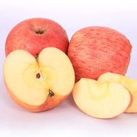 莓时莓刻 冰糖心红富士苹果 大果 5斤