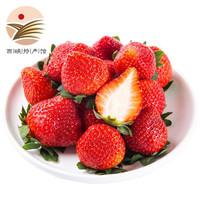 静益乐源 红颜草莓 巧克力奶油草莓 3斤