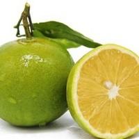 生鲜密语  麻阳冰糖橙  5斤 直径55-60mm