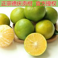 广东正宗德庆贡柑皇帝水果5斤皇帝柑老树果小果试吃新鲜带箱非10