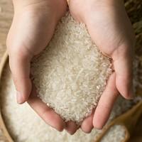 YANXUAN 網易嚴選 1156085 五常有機稻花香米 5千克