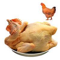 WENS 温氏 黄油鸡 1kg*5件 + 汪陂途 泰和白凤乌鸡 600g*5件