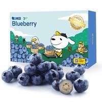 智利进口蓝莓原箱12盒装 约125g/盒 新鲜水果 双十二继续199元两箱 *2件