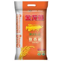 金龙鱼 软香稻 苏北大米 5kg