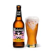英豪 精酿啤酒 比利时小麦艾尔精酿480ml*12瓶装