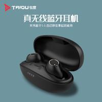TAIDU 钛度 TWS101 奋豆 真无线蓝牙5.0音乐耳机