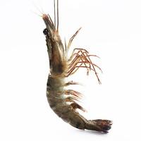 味库 越南活冻黑虎虾盒装 大号 毛重约600g *3件