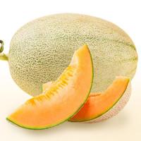 名滋园 新疆哈密瓜 2个装 净重5-7斤