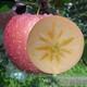 果堆 冰糖心苹果 70-75mm 带箱10斤 16.8元