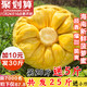 海南三亚菠萝蜜当季新鲜水果木菠萝蜜肉整箱假榴莲25斤一整个包邮 54.8元