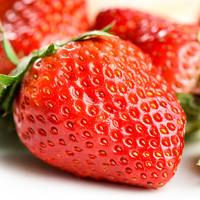 新鲜奶油草莓1斤14.8元