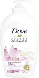Dove 多芬洗手液 带有香味 6 件装 6 × 250ml *2件