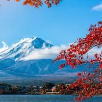 扬州-日本大阪7天往返含税机票