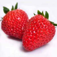 味立方 新鲜奶油草莓 精品5斤装 +凑单品