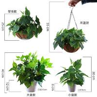 仿真绿萝盆栽假花植物室内装饰塑料花小盆栽桌面摆设绿萝绿植盆景