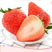 DANGNINGGUOPIN 砀宁果品 大凉山大果 红颜草莓 5斤