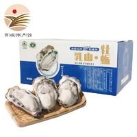 乳山生蚝 牡蛎 5斤礼盒装
