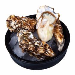 京东PLUS会员: 南泓村 乳山生蚝 牡蛎 净重3斤 约30只