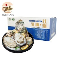 静益乐源 乳山生蚝 牡蛎 5斤