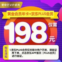 爱奇艺vip会员12个月+享一年PLUS会员权益( 不支持tv端 )