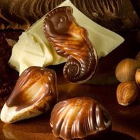 88VIP : GuyLian 吉利莲 金贝壳夹心巧克力 22粒 250g *4件