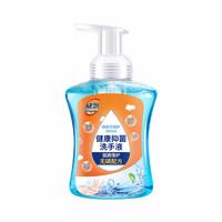 威飘 泡沫抑菌洗手液 家庭装清香型 360ml*2瓶
