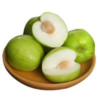 台湾牛奶大青枣750g 新鲜枣子当季水果应季大脆枣孕妇水果
